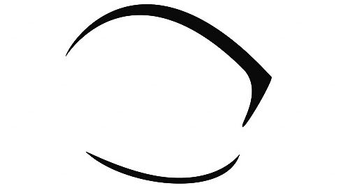 Ocular Fusion